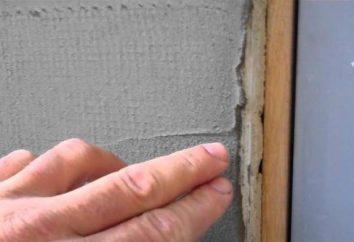 Costruire griglia di facciata: una visione d'insieme, i tipi e rating. intonaco di facciata Reticolo