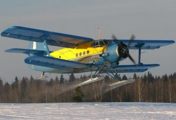 """""""Mais"""" (An-2): la velocità del motore e le foto"""
