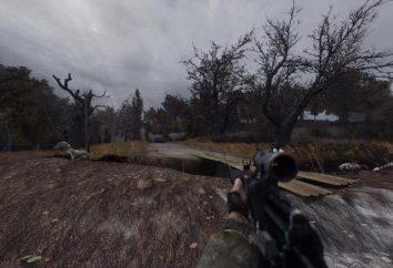 """Requisiti di sistema """"STALKER: Shadow of Chernobyl"""" e la recensione del gioco"""