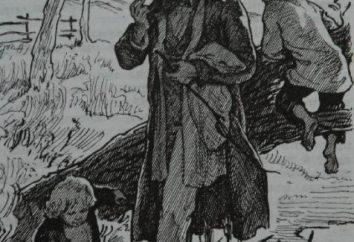 """Educação e formação de Bazarov na novela """"Pais e Filhos"""". Características do herói"""