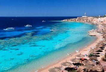 Iberotel Il Mercato 5 * Sharm el-Sheikh. Sharm El Sheikh recensioni Travellers