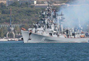 """""""Bystry"""" – okręt Floty Czarnomorskiej"""
