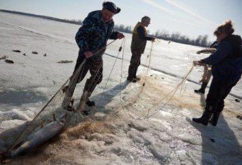 Consejos de red de pesca