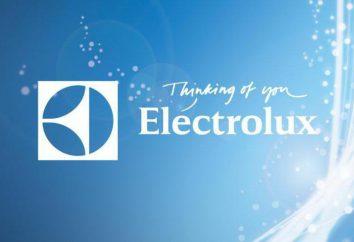 esquentador Electrolux EWH 50 Royal: Descrição e características. Uma breve visão geral dos modelos Electrolux EWH 50 e Real H Electrolux EWH 50 Real prata