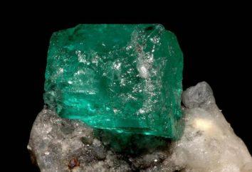 Emerald (pietra): proprietà, segno zodiacale. proprietà magiche di smeraldo per il Toro, Pesci, Capricorno, Ariete, Cancro