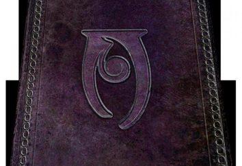 """Stregoneria """"Skyrim"""": gli incantesimi e le loro proprietà"""