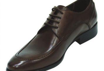 Chaussures hommes classiques: formes, photos