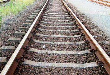 La ferrovia più lunga del mondo. Dalla Cina a Madrid