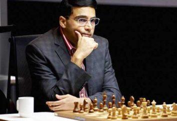 champion du monde d'échecs – le roi du monde d'échecs