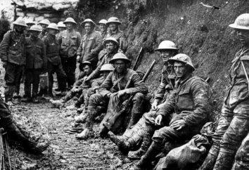 A Primeira Guerra Mundial: brevemente sobre o principal