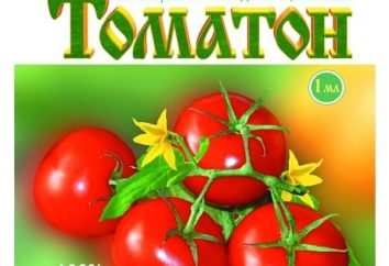 """Stymulator owoców """"Tomaton"""": Opinie i zalecenia"""