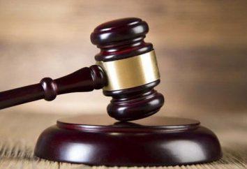 La rappresentanza legale in materia civile. Concetto e tipi di rappresentanza legale