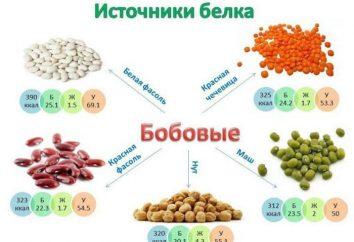 Przydatne produkty białkowe: lista (tabela)