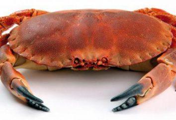 Crab: dream interpretację. Znaczenie i interpretacja snu