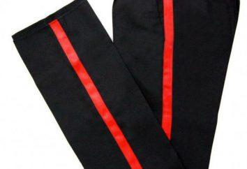 Stripes – co to jest? Pochodzenie i przeznaczenie