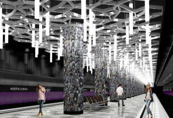 """A estação de metro """"Nekrasovka"""": construção, concepção, datas de comissionamento"""
