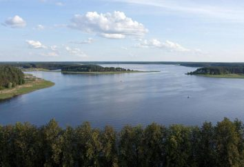 Erholung am Seliger See mit einem Zelt: wo bleiben?