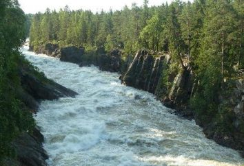 Imatra Waterfall: Beauty nei tempi previsti