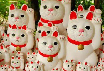 Que faire du Japon: des idées intéressantes, des souvenirs et des recommandations
