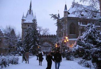 Budapest Winter: cosa vedere e da gustare nella capitale ungherese?
