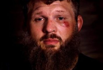 Roy Nelson: fighter MMA stonowane