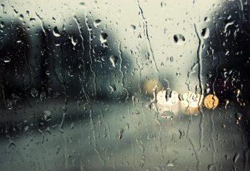 Dlaczego deszcz – skąd się bierze?