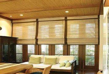 interior de bambu