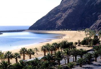 Hotel Catalonia Punta del Rey 4 * (España, Tenerife): fotos y comentarios