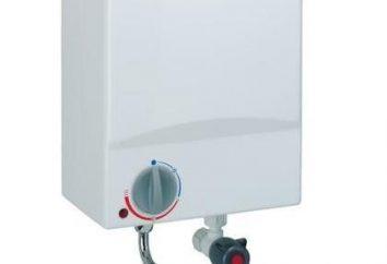 Calentador de agua de flujo: Características