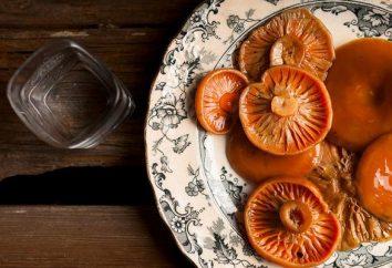 Tocken Pilze: wie sie für den Winter beizen?