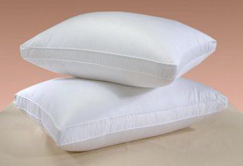 O que um travesseiro sonho, uma cama com um travesseiro? Por sonho de penas de um travesseiro?