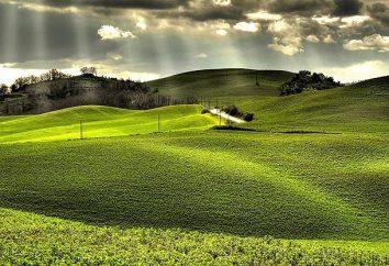 Design de paysage: réalisation du territoire