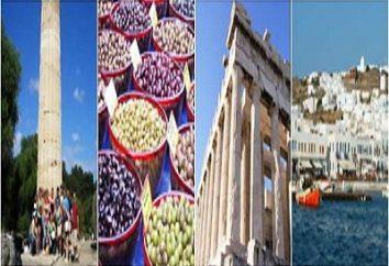 wiza grecki