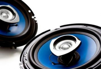 system głośników i jego warianty