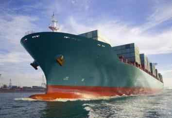 Dlaczego statek nie zatonął: Fizyka