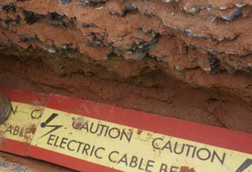 Bureau du Conseil privé Stove – un outil efficace pour la protection des lignes de câble