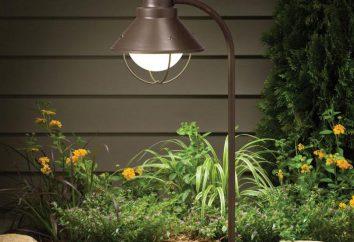 Lámpara de calle LED de iluminación: descripción y fotos