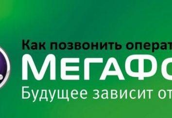 """""""Megafon"""", operator: jak przejść, jeśli są pytania"""