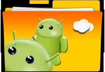 """File manager per il """"Android"""" – gli utenti Lodestar"""