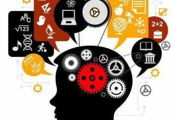 La scienza – che cosa è questo? Definizione, l'essenza, gli obiettivi, l'area e il ruolo della scienza
