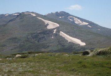 Monte Kosciuszko: foto, altura, descrição. Onde está a montanha de Kosciuszko?