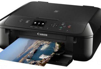 Jak drukarki do drukowania tekstu: krok po kroku