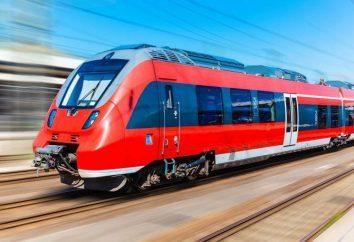 Cómo transportar un perro en el tren? Ferrocarriles Las nuevas normas sobre el transporte de animales