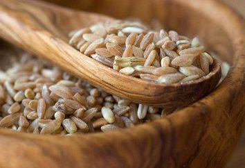 El nombre antiguo de una caja de madera para el almacenamiento de grano: un cofre o Soucek?