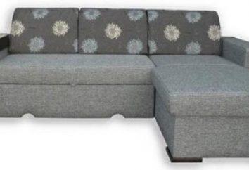 """Las instrucciones detalladas para el montaje del sofá, """"Mónaco"""" """"Una gran cantidad de muebles"""""""