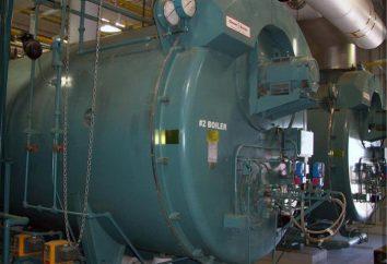 caldaie industriali: descrizione, tipi, funzioni. competenza caldaie industriali