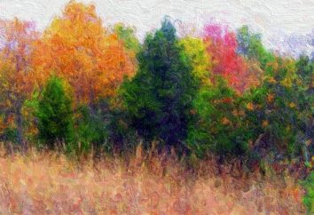 Chcesz wiedzieć, jak narysować kolory jesieni?