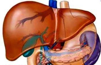 Hépatomégalie: diffuse des modifications hépatiques. La structure des organes internes
