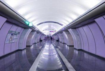 """""""Volkovskaya"""" Station (U-Bahn): Arbeitsstunden und Freizeiteinrichtungen in der Nähe"""