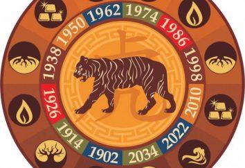 Tygrys i pies: zgodność z horoskopem wschodnim
